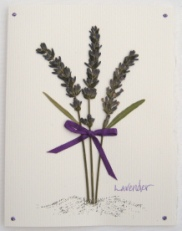 Lavender Bouquet  Note Card
