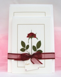 Gift Set of Small & Large Rose Cards