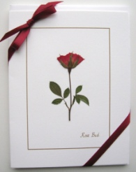Gift Set of 4 Rose Note Cards