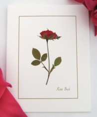 Single Pressed Rose Note Card