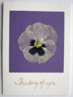 Thinking of You Pansy Card